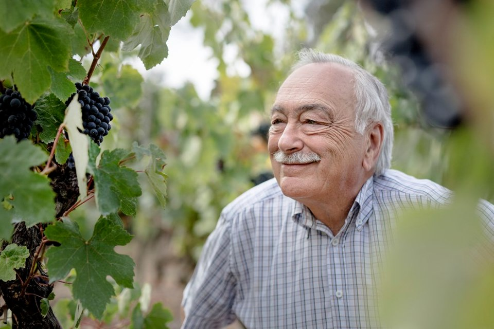 Bairrada: Luís Pato está no 'TOP 100 Wineries of 2019'  da Wine & Spirits