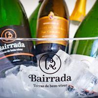 Bairrada conquista 11 prémios em concurso nacional de vinhos